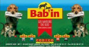 CODICO/BAB'IN